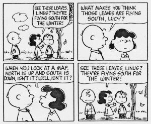Charlie-Brown-south